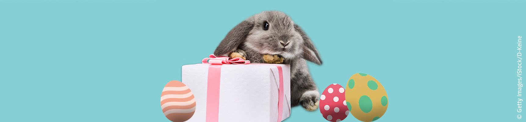 Geschenk-Ideen vom Osterhasen